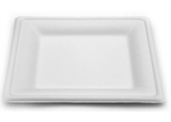 ASSIETTE FIBRE DE CANNE BIODEGRADABLE CARREE 260x260 CA500 -20+240°