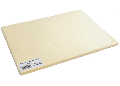 SET VELOURS CHAMPAGNE 90g/m² ANTIDERAPANT 30x40 les 800